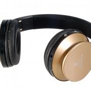 mkeb203-headphonesgold4